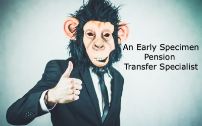 Pension Transfer Abridged Advice – Role of Pension Transfer Specialist